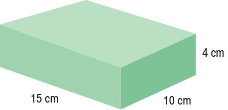 TA-YCBS  Rectangle  15 x 10 x 4 cm  Standard