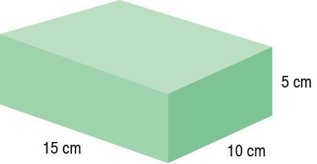 TA-YCBT  Rectangle  15 x 10 x 5 cm  Standard