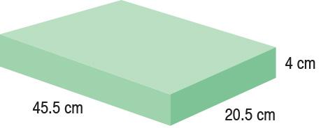 TA-YCGG  Rectangle  45.5 x 20.5 x 4 cm  Standard